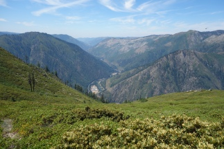 Looking down at the Feather River canyon